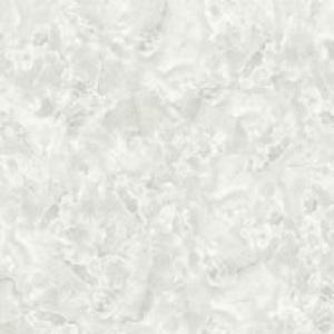 Gạch lát nền Hoàn Mỹ 60x60 1567