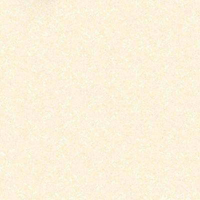Gạch lát nền Hoàn Mỹ 60×60 8302