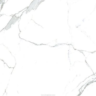 Gạch lát nền Hoàn Mỹ 80×80 1823
